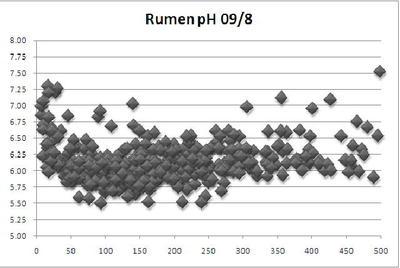 Rumenph